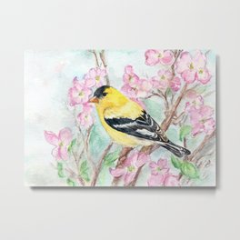Goldfinch and Dogwood Flowers Metal Print