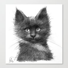 Black Kitten SK135 Canvas Print