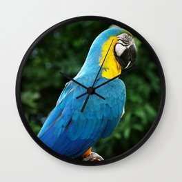 Parrot Trooper Wall Clock