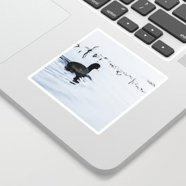Lucky Duck - Animal Nature Photography Sticker