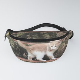 Cute Kitten Playing on the Stairs Fanny Pack