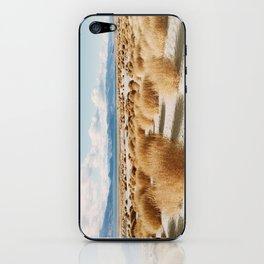 Paiute Land iPhone Skin