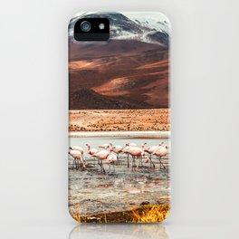 Flamingo Lake, Bolivia #society6 #buyart #homedecor iPhone Case