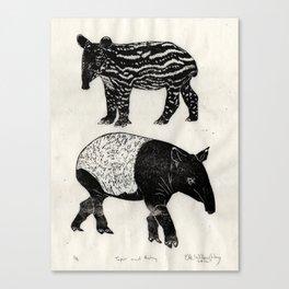 Malayan Tapir & Baby Canvas Print