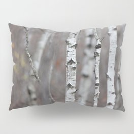 Canadian Prairies 5 Pillow Sham