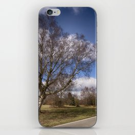 Birch On The Common iPhone Skin