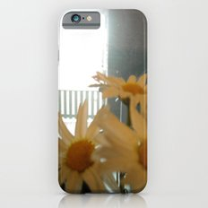 Chicago Daisies ~ flowers iPhone 6s Slim Case