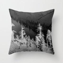 WINTER HIKE Throw Pillow