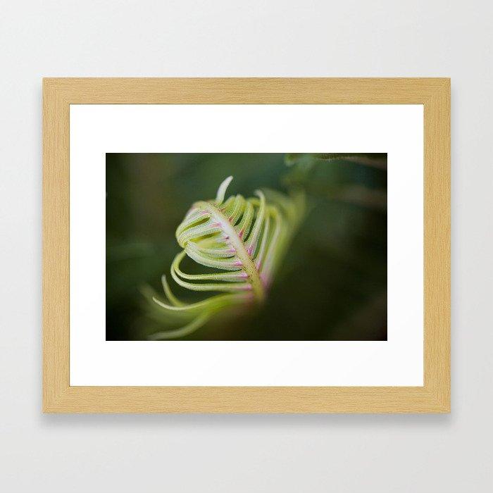 Furl Framed Art Print
