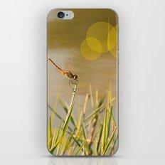 a good summer iPhone & iPod Skin