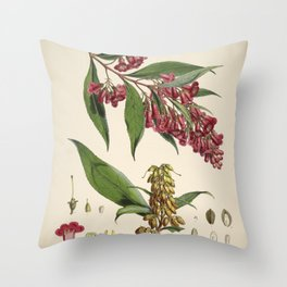 Flower buddleia colvilei Throw Pillow