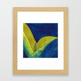 Snake Plant On Blue Framed Art Print