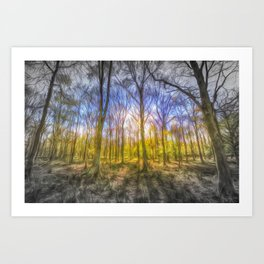 Light Through The Forest Art Print