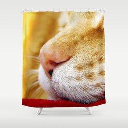 No Day Is So Bad It Can't Be Fixed With A Nap. Shower Curtain