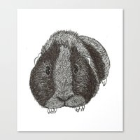 guinea pig Canvas Prints featuring Guinea Pig. by Elena O'Neill