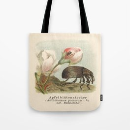 Antique Lithograph of Apple Blossom Weevil Tote Bag