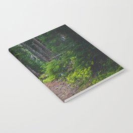 Green Forest Path (Color) Notebook