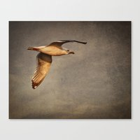 infinite Canvas Prints featuring Infinite by Elke Meister