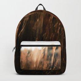 Auburn Backpack