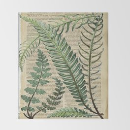 Book Art Page Botanical Leaves Decke