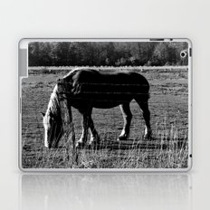 Dark Horse Laptop & iPad Skin
