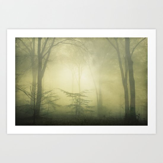 forest awakening Art Print