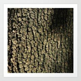 Barking Up the Right Tree Art Print