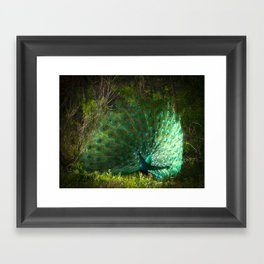 Strutting Framed Art Print