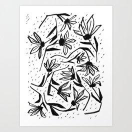 Black and White Echinacea Wildflower Drawing Art Print