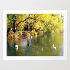 Autumn Mood at Lake Art Print