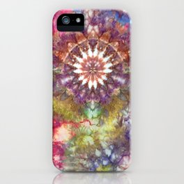 Kaleidoscope Burst Garden iPhone Case
