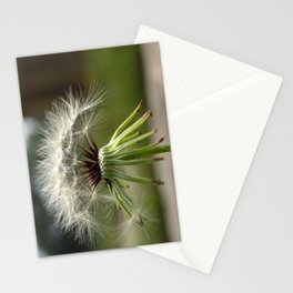 Make a wish... Stationery Cards