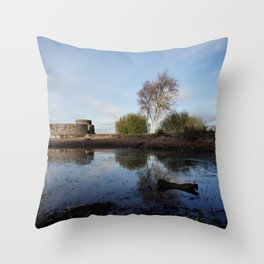 Cold Clear Morning At Chasewater Throw Pillow