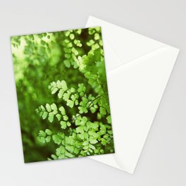 maidenhair Stationery Cards