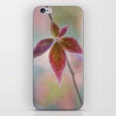 Solitair iPhone & iPod Skin