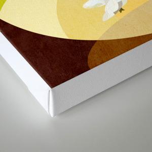 Curves Sao Francisco De Assis Canvas Print By