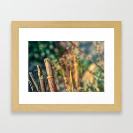 Broken Sun Framed Art Print