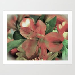 Blooming Flower Art Print