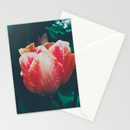 Floral Rain Stationery Cards