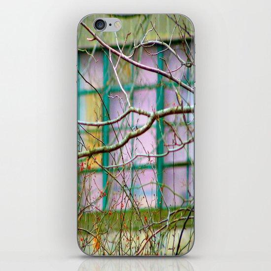 Backyard Abstract iPhone & iPod Skin