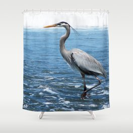 Great Blue Heron on the Pacific Coast in Costa Rica Shower Curtain