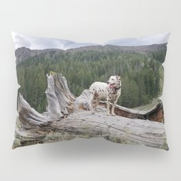 Charlotte in Muldoon Canyon Pillow Sham