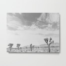 JOSHUA TREE IV Metal Print