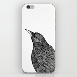 Pensive Crow Looks Off Into the Distance iPhone Skin