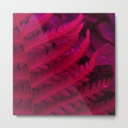 red fern abstract II Metal Print
