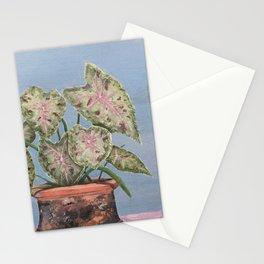 Paleta de Pintor Stationery Cards