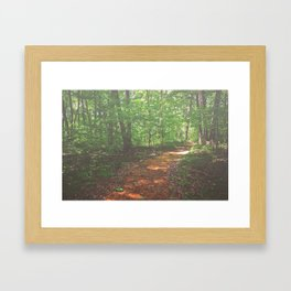 Soft Forest Framed Art Print