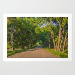 Country Road, North Dakota 7 Art Print