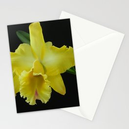Yellow orchid Cattleya  Stationery Cards