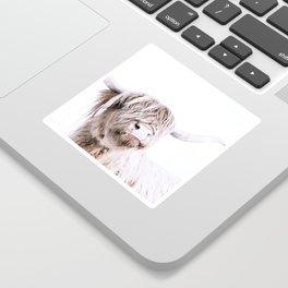 HIGHLAND CATTLE PORTRAIT Sticker